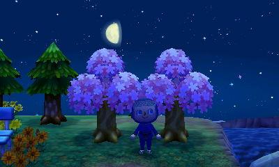 育た 木 ない 森 あつ